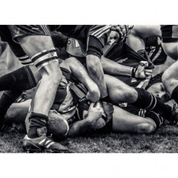 Tableau sport rugby