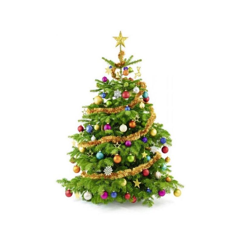 Acheter sapin de noel lyon 2017 noel for Acheter decoration noel