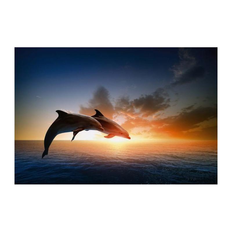 Célèbre Tableau grand format dauphin et coucher de soleil sur la mer DS09