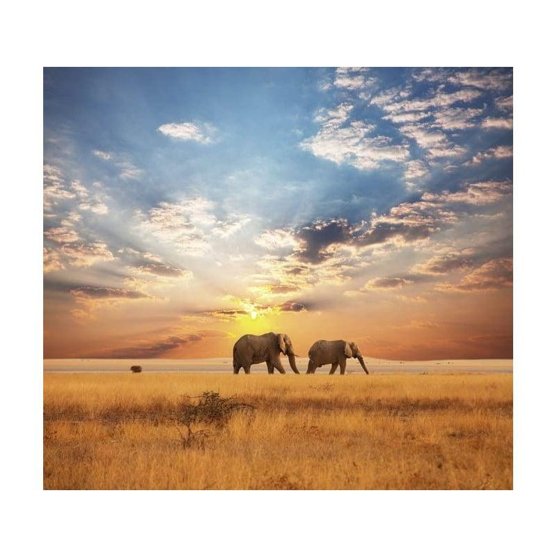 Papier Peint SAVANE AFRICAINE