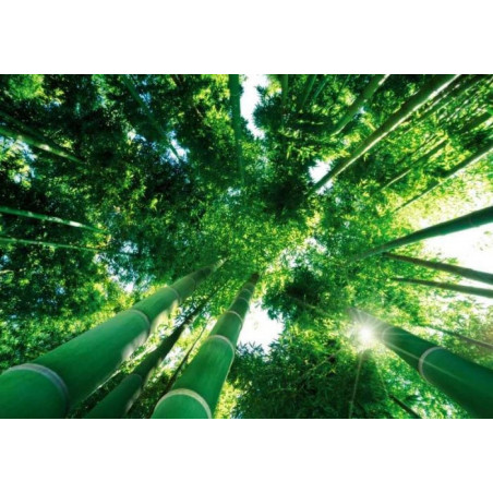 UNDER THE BAMBOO poster