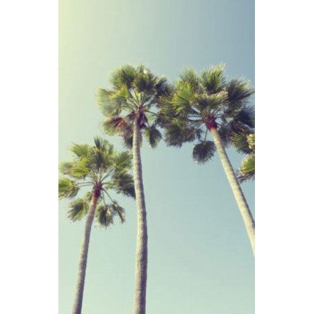 UNDER THE PALM TREES Wall hanging