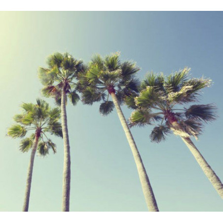 UNDER THE PALM TREES Poster