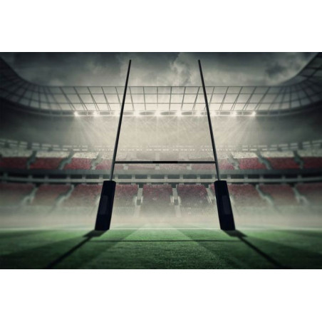 RUGBY STADIUM Poster