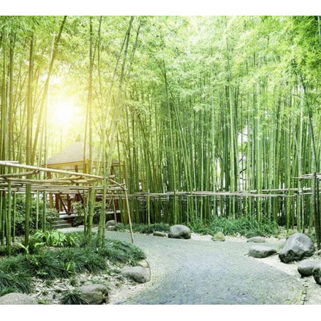 GREEN BAMBOO TREES Poster