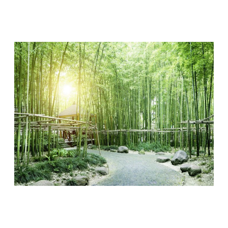 GREEN BAMBOO TREES Canvas print