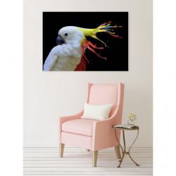 Cockatoo design canvas print