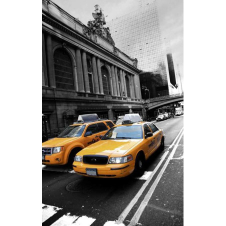 MYTHIC TAXI wall hanging