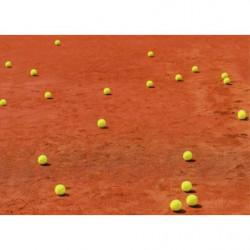 Tableau tennis sur terre battue