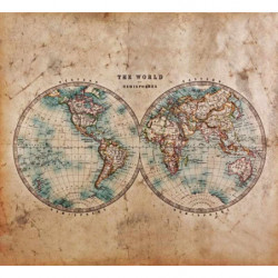 Poster THE WORLD IN HEMISPHERES