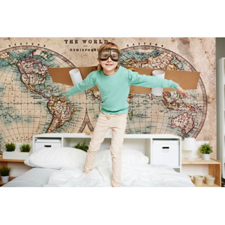 THE WORLD IN HEMISPHERES Wallpaper