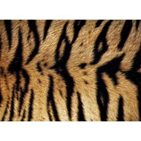 Cuadro en lienzo TIGRE DE BENGALA