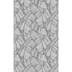 JAPANESE BANANA TREE Wallpaper