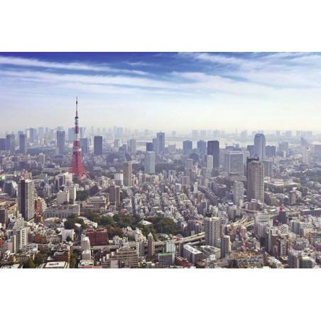 Papel pintado TOKIO