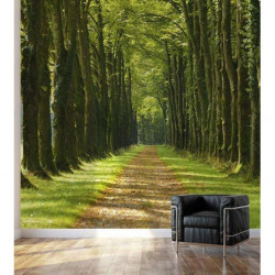 Poster trompe l'oeil forêt
