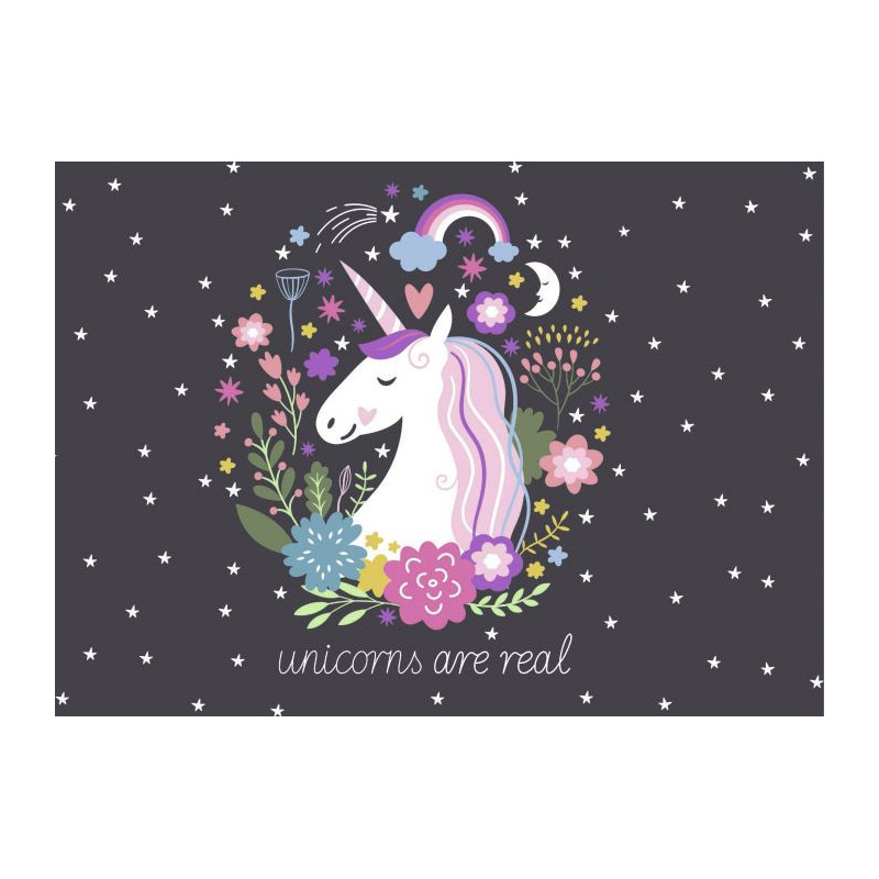 Tableau licorne pour chambre d 39 enfant les licornes for Chambre unicorn