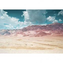 Tableau paysage désertique design