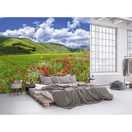 VALLEY OF THE POPPIES Poster