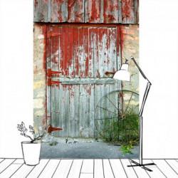Papier peint trompe l'oeil porte en bois ancienne