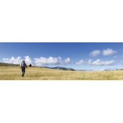 Tableau paysage Vercors