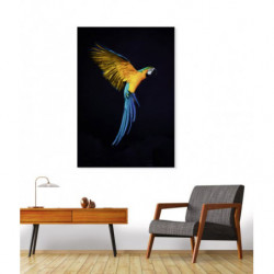 Tableau perroquet design