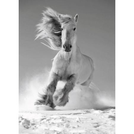 Tableau WHITE HORSE