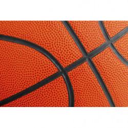 Póster baloncesto naranja