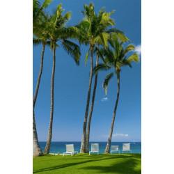 Papier peint palmiers en bord de mer