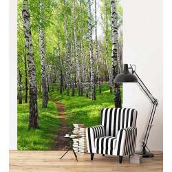 Poster de porte forêt de bouleaux