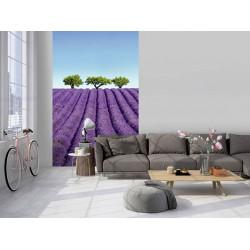 Poster landscape lavender violet