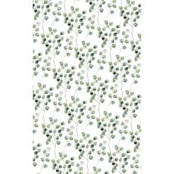 Poster with green eucalyptus motif