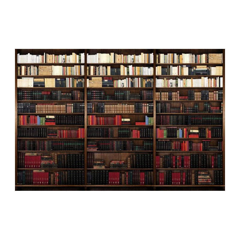 poster mural trompe l 39 oeil biblioth que avec de vieux livres. Black Bedroom Furniture Sets. Home Design Ideas