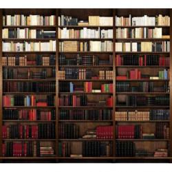 Papier peint trompe l'oeil bibliothèque panoramique