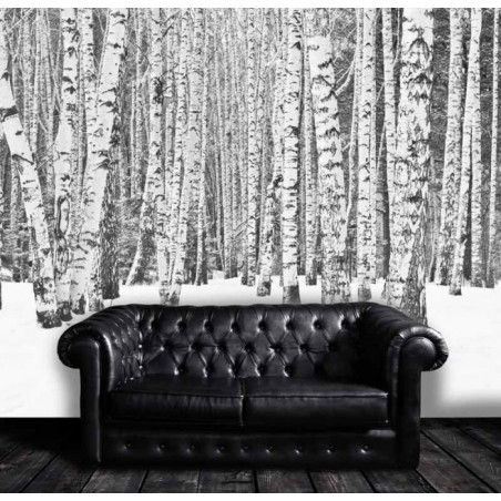 Poster BLACK AND WHITE FOREST