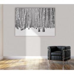 Tableau forêt de bouleau en noir et blanc
