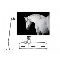 Cuadro en lienzo de caballos con diseño en blanco y negro