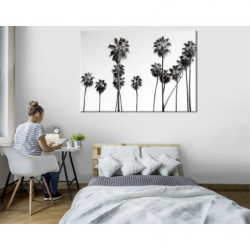BLACK AND WHITE PALM Canvas print