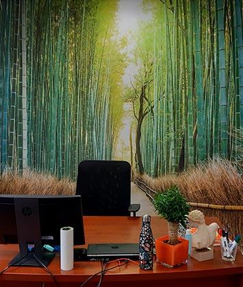 Poster panoramique bambou dans le bureau d'Ahna