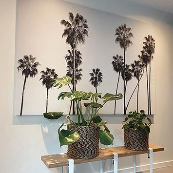 Tableau palmiers noir et blanc chez Emilie