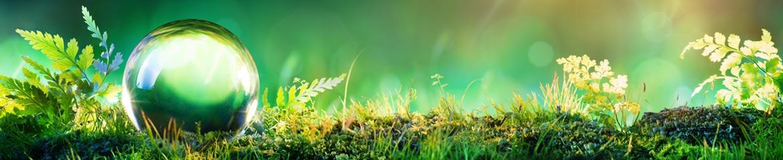 Normes environnementales