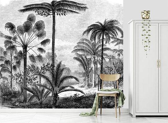 gravure palmier papier peint deco salon