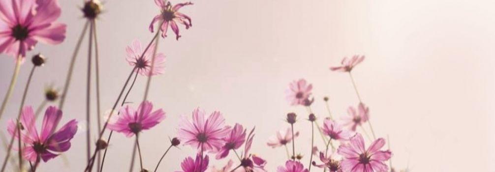Décoration murale Fleurs