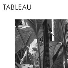 Tableau tropical
