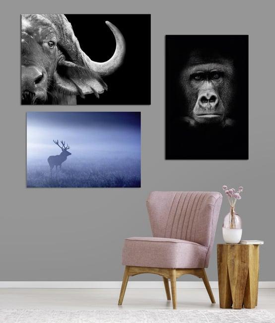 Decoración de paredes Animales