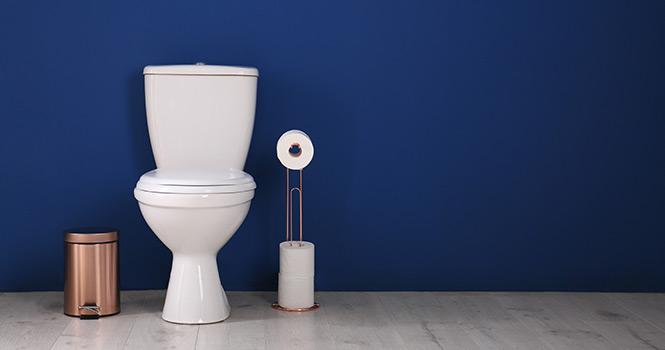 Décoration murale Les toilettes