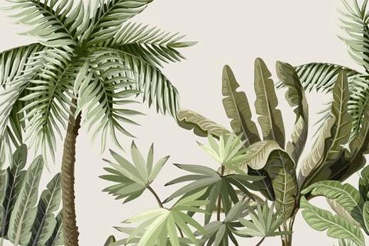 Papier peint illustration jungle