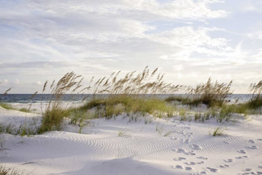 Tableau déco plage et dune de sable