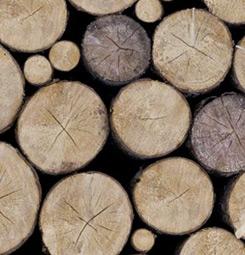 Tableau rondins de bois