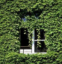 Tenture suspendue trompe l'oeil fenêtre