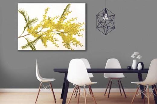 Tableau fleur de mimosa